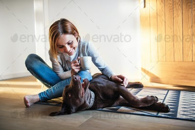 A young woman sitting indoors on the floor at home, playing with a dog.