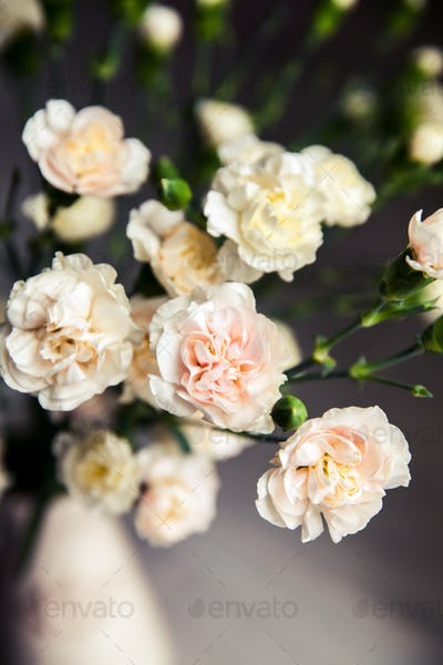 delicate bouquet of carnations in a vase vintage. romance