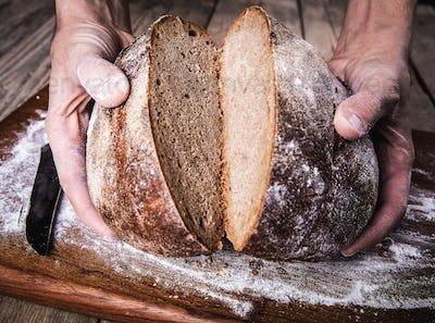 food. rye bread in male hands