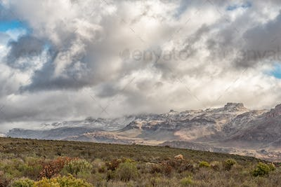 Fynbos and snowy mountain landscape seen from the Kromrivier Pass