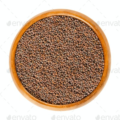 Black mustard seeds in wooden bowl over white