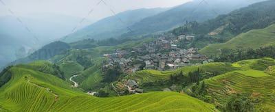 Views of green Longji terraced fields and Pingan village