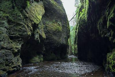 Oneonta Gorge. Columbia River Gorge