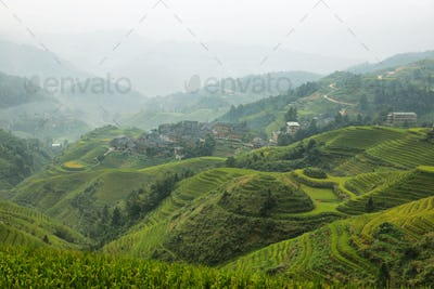 Views of green Longji terraced fields and Dazhai village