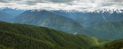 Hurricane Ridge of Olympic National Park