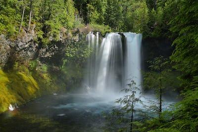 Koosah Falls in Mc kenzie pass, Oregon.