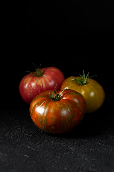 Hereditary tomatoes. Three tomatoes of different colors on a bla