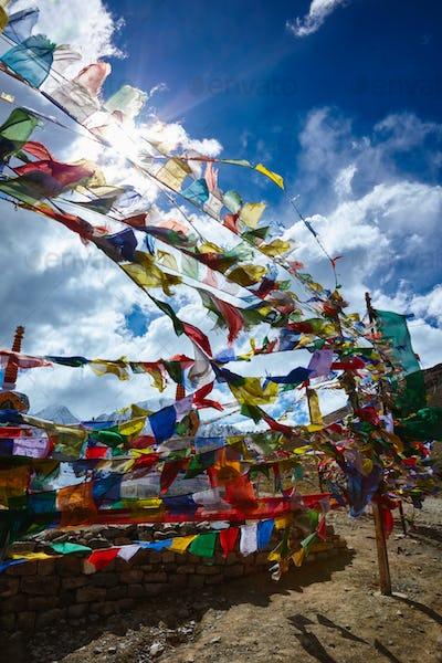 Buddist Prayer flags in Himalayas