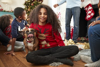 Portrait Of Girl With Pet French Bulldog Celebrating Family Christmas At Home Together