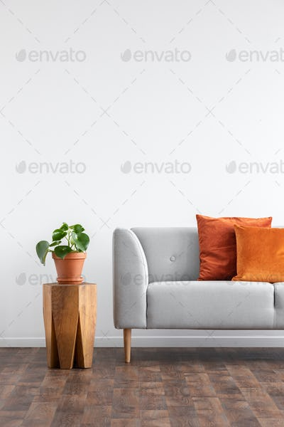 Orange pillows on grey sofa next to plant on wooden table in gre