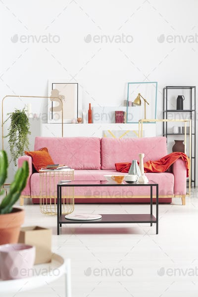 Close-up of a plant and vase with a pink sofa, coffee table and