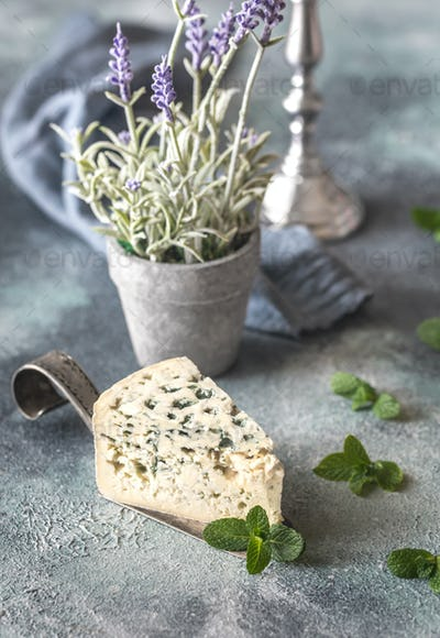 Blue cheese with mint leaves