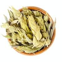 Sideritis, Greek mountain tea in wooden bowl over white
