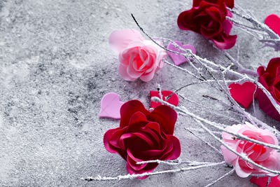 Branches in the snow with pink and red rose buds and hearts on a concrete background with space for