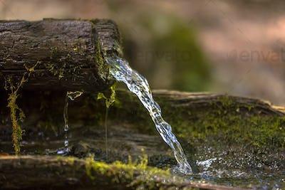 Mountain water spring