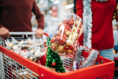 Young couple put in a cart Christmas decorations