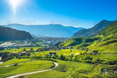 Vineyards view in Santa Maddalena Bolzano. Trentino Alto Adige S