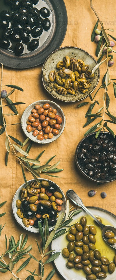Mediterranean pickled olives and olive tree branches, yellow background