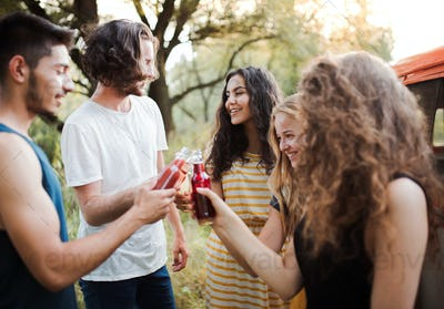 A group of friends standing outdoors on a roadtrip through countryside, clinking bottles.