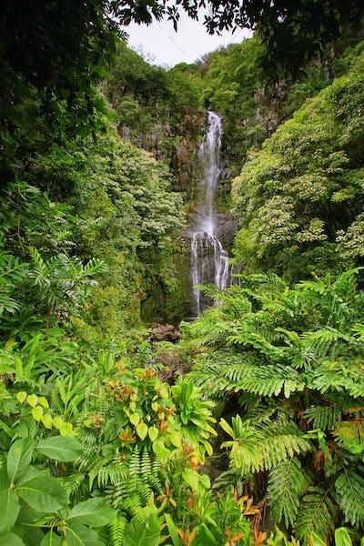 Wailua falls in east Maui