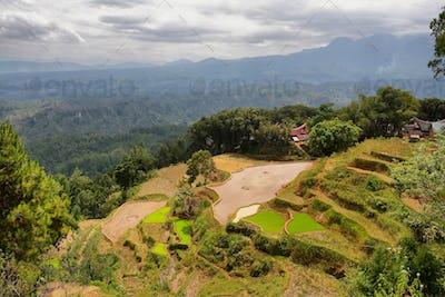 Village of Limbong
