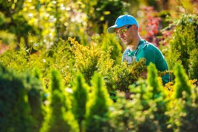 Pro Gardener in the Garden