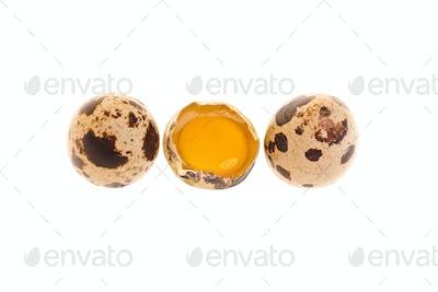 Photo: Quail Eggs Whole And Yolk