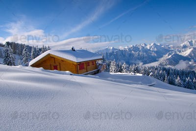 landscape of hermitage isolated in the snow