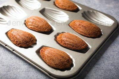 Chocolate madeleines cookies