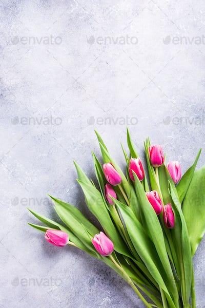 Beautiful yellow pink tulips