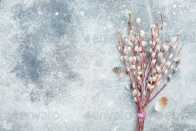 Pussy willow bouquet. Easter greeting card