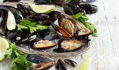 Fresh raw  mussels