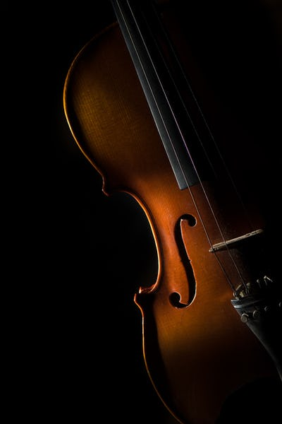 Violin on a black background in oblique light on one side