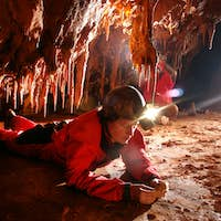 Paleontologist studying fossils in a cave
