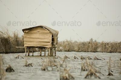 Stilt hut