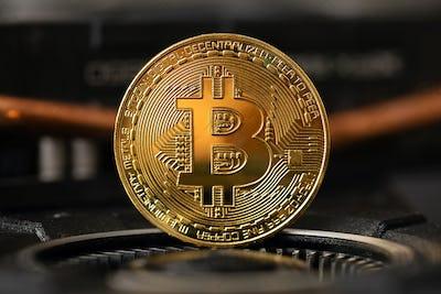 Gold bitcoin standing on crypto mining GPU computer hardware