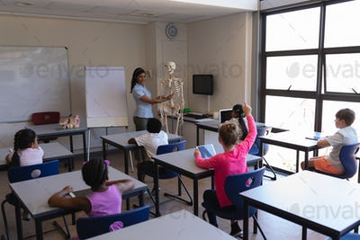 Female teacher explaining skeleton parts to schoolkids in classroom