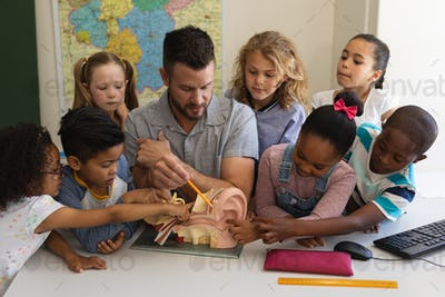 Teacher explaining anatomy at desk with students who listen in classroom of elementary school