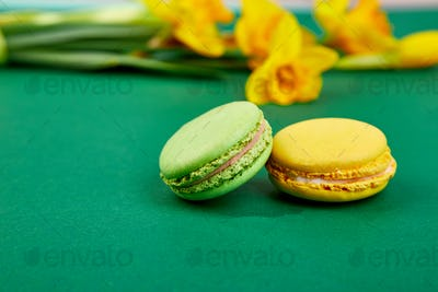 French delicacy, macaroons colorful with spring blossom. Bouquet flowers narcissus
