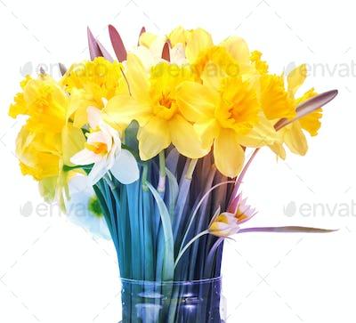 narcissus flower bouquet