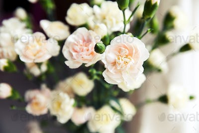 delicate bouquet of carnations in vintage style