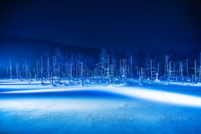 Beautiful outdoor landscape with blue pond river at night with l