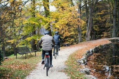A rear view of senior couple with electrobikes cycling outdoors in park.
