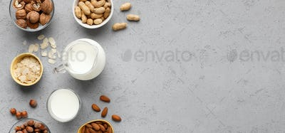 Vegan nut milk concept,top view, copy space