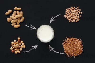 Lactose free milk concept