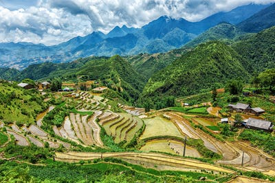 Rice field terraces. Near Sapa, Mui Ne
