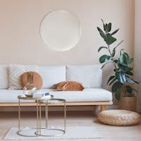 Living room nterior with sofa, mirror and ficus