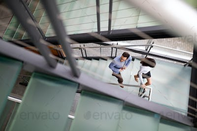 Young business people climb the stairs in the office