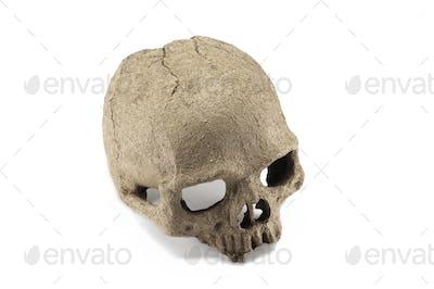 Halloween human skull isolated on white background