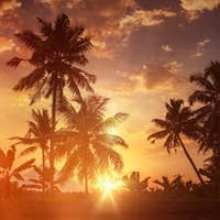 Sunset on Kerala backwaters